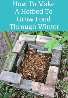 Horse Manure, Row Covers, Grow Food, Covered Garden, Forest Garden, Water Sources, Organic Matter, Garden Structures, Compost