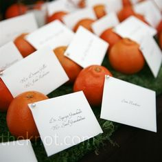 Liesel and Gary pinned the escort cards to tangerines so guests could eat them, leaving no waste. They were displayed on a bed of grass for a natural look.