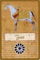 Zara (White horse of the diamond) Tarot, Symbols, Letters, Horse, Live, Diamond, Letter, Horses