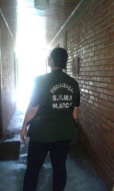 Sempre ha uma luz no fim do tunel.. Sylvia Fiscal, Rede de Proteção Animal - Curitiba, outubro de 2014