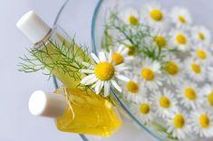 DOMÁCÍ ŠAMPON (Z KOPŘIV, HEŘMÁNKU ČI BEZU).  Vyrobte si tento jednoduchý, rychlý a přírodní šampon. Záleží pouze na vás, z jakých bylin bude, či jak bude vonět.