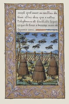 Illumination from manuscripts about bees and beekeeping