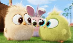 easter hatchlings GIF by Angry Birds Angry Birds 2016, All Angry Birds, Smileys, Funny Animal Pictures, Cute Pictures, Vogel Gif, Bird Gif, Bird Wallpaper, Gif Animé