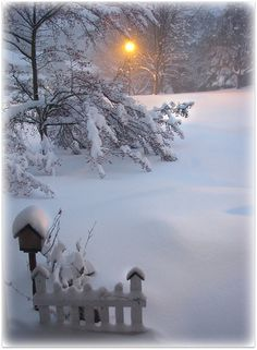 Love the silence of a deep snowfall#liveconsciously ... snow falling, especially at night, really is a deep silence... one that helps me truly live consciously.