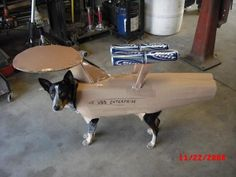 USS Canine commanded by Captain Woof