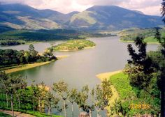 #Munnar is just the #right #choice of #place for #spending your #honeymoon in the #place where #beauty has been #portrayed at #best.