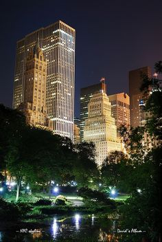 NYC. Central Park and city lights at night