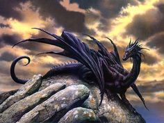 #black #dragon