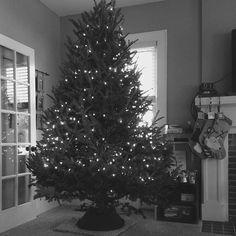 We love Christmas an