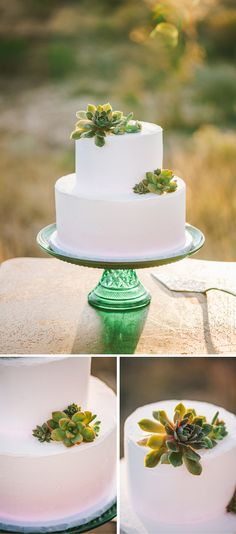 Simple white wedding cake with succulent accents.