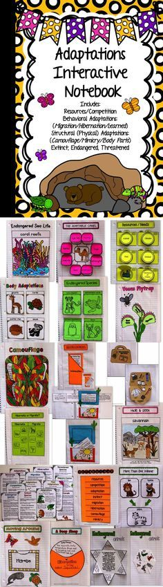 This ADAPTATIONS Interactive Science notebook contains pages for behavioral and structural (physical) adaptations, resources, competition, migration, hibernation, camouflage, learned behavior, mimicry, body parts, extinct, endangered, and threatened organisms.