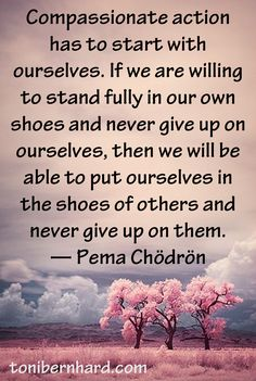 quotes from Pema chodron image start where you are Change Quotes, Quotes To Live By, Life Quotes, Attitude Quotes, Quotes Quotes, Pema Chodron, Meditation Quotes, Daily Meditation, Mindfulness Quotes