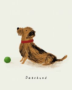 Patient pooch Illustration by Rachael Guiver