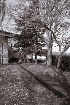Euskal Herria. Álava / Araba, Valles alaveses, Turiso. Abril de 2008