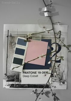 Pantone colours, twigs and pastels. STIL INSPIRATION: Moodboard | Spring colour