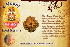 Benefits of Four Mukhi Rudraksha: Seed Mantra: Om Hreem Namah God: Lord Brahma  Planet: Mercury  Four Mukhi Rudraksha represents Lord Brahma and is for the planet Mercury, effective for memory and concentration in students. It enhances creativity and is also beneficial for scientists, writers and artists. This Rudraksha helps in mind related ailments and reduces the malefic effects of planet Mercury.  http://www.rudralife.com/Rudraksha/details.php?id=11