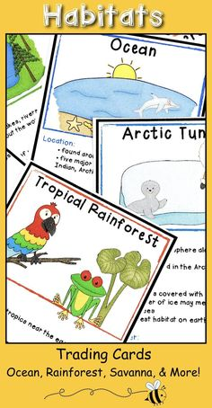 Habitat Activities - Trading Cards For Habitat Research Project Primary Teaching, Teaching Writing, Writing Activities, Science Activities, Activities For Kids, Writing Ideas, Elementary Teaching, Teaching Ideas, Science Ideas