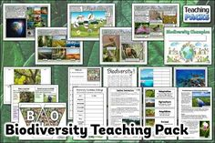 Learn about the amazing variety of life on Earth with our Biodiversity resources! This pack includes a topic guide (in PDF, Powerpoint and video formats), printable activities to try, and display resources to decorate your learning environment. Science Curriculum, Science Resources, Teacher Resources, Teaching Packs, Help Teaching, Powerpoint Format, Identify Plant, Story Starters, Sorting Activities