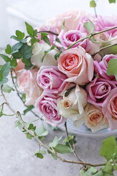 『ピンクのグラデーション~バラの花』