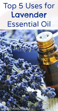 Top 5 Uses for Lavender Essential Oil naturalfamilytoday.com