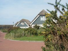 Vrijstaande luxe bungalows. Bungalows, Shed, Outdoor Structures, Backyard Sheds, Sheds, Coops, Bungalow, Barn, Bungalow Homes