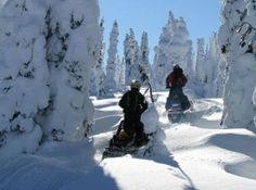 Make your own trails by snowmobiling in Breckenridge, Colorado.