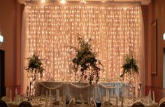 Gorgeous wedding or party backdrop.