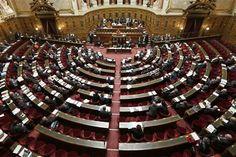 Le Sénat adopte la loi sur la sécurisation de l'emploi - http://www.andlil.com/le-senat-adopte-la-loi-sur-la-securisation-de-lemploi-114951.html