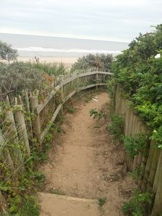 To the beach. Mablethorpe, Lincolnshire