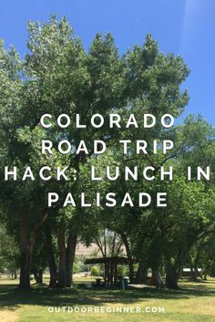 Palisade, Colorado doesn't have great lunch options. Save money on your Colorado road trip by having a picnic at this great local park with what you already have in your car.