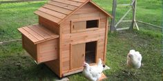 Non Toxic Alternative for Waterproofing Chicken Coops