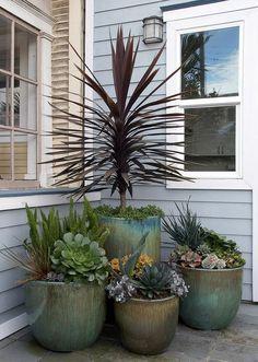 Flora Grubb Gardens is a garden design shop in San Francisco's Bayview District. Flora Grubb offers a palette of beautiful, durable plants...