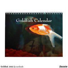 Goldfish  2021 calendar Solid Shampoo, How To Start Yoga, Calendar 2020, Animal Skulls, Cheer Up, Tropical Fish, Aquarium Fish, Goldfish, Gifts For Family