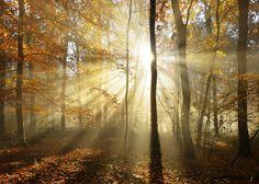 Herfst begint in Limburg zonnig | 1Limburg | Nieuws en sport uit Limburg