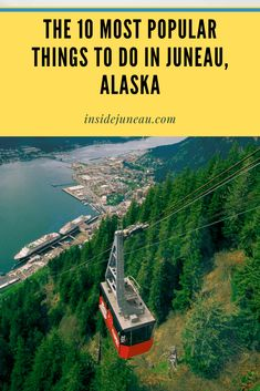 The 10 Most Popular Things to Do in Juneau, Alaska  Visit insidejuneau.com for more trip planning tips.  #alaskatravel Alaska Cruise Tips, Alaska Travel, Tongass National Forest, Popular Things, Juneau Alaska, Nature Photography Tips, Shore Excursions, Travel Planner, Trip Planning