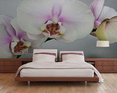 Fototapeta Orchidea na szarawym tle