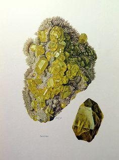 1967 Antik Farbe drucken von Schwefel, Jahrgang mineralische Gravur, chemisches Element Kristall Lithographie, Schwefel-Geologie Mineralogie.