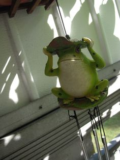 My Balkony Frog