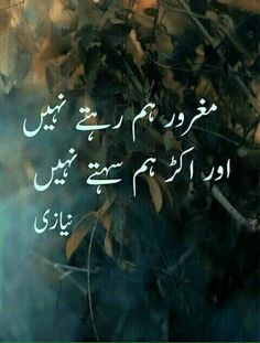 New Latest Poetry Collection Urdu Funny Poetry, Funny Quotes In Urdu, Poetry Quotes In Urdu, Best Urdu Poetry Images, Urdu Poetry Romantic, Love Poetry Urdu, Nice Poetry, Funniest Quotes, Ali Quotes
