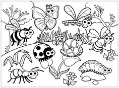 Insects to print - Insects Coloring Pages for Kids - Just Color Kids : Coloring Pages for Children Insect Coloring Pages, Cat Coloring Page, Colouring Pages, Printable Coloring Pages, Free Coloring, Coloring Pages For Kids, Coloring Sheets, Kids Coloring, Coloring Books
