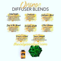Let's talk about 4 really awesome oils that are on flash sale right now! off for quick order and look at all of these amazing diffuser recipes! Natural Beauty from BEAUT. Essential Oil Diffuser Blends, Orange Essential Oil, Doterra Essential Oils, Young Living Essential Oils, Yl Oils, Aroma Diffuser, Cedarwood Oil, Living Oils, Diffuser Recipes