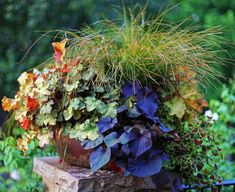 Container selected as finalist for Fine Gardening's 2012 Container Design Challenge 'Fantastic Foliage' .