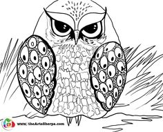 Grumpy Owl coloring and tracing page. This is to go with the step by step on youtube by the art sherpa