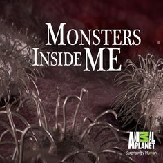 Monsters Inside me- Can't help but love this show.