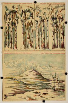 Arch c. 11a. Zimni krajina (Rip) pozadí. / 11b. Zimni krajina kulisy. Münzbergovy dekorace z ceske historie. Navrhl Dr. Ing. Svatopluk Bartos.