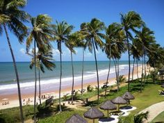 Praia do Forte, Sergipe, Brazil.