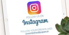World of Wallpaper Vintage Bird Wallpaper, Vintage Birds, Denmark Street, United Kingdom, Dreaming Of You, Instagram, England
