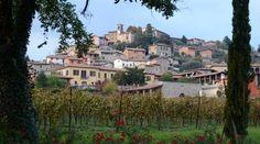 #Turismo nel Bresciano, i turisti scelgono la #Franciacorta