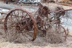 Love old farm equipment