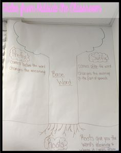 Use a tree to help students understand the relationship between word parts